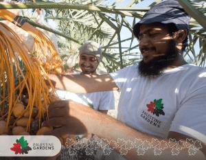 Palestine Gardens Farms